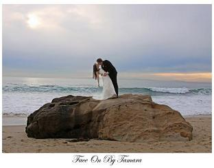 Welcome To Ever After Beach Weddings A Full Service Wedding Company Providing Beautiful And Park Packages For Ceremonies In The Southern